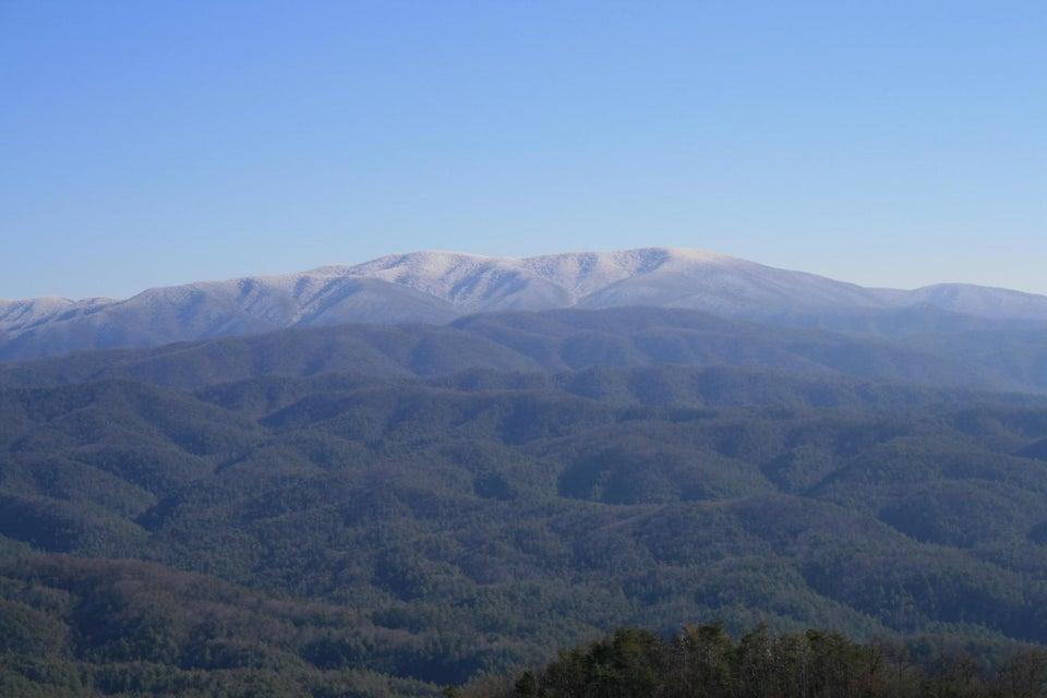 土地,用地 为 销售 在 Tract 29R5 Chilhowee Mountain Tr Tract 29R5 Chilhowee Mountain Tr 马里维尔, 田纳西州 37803 美国