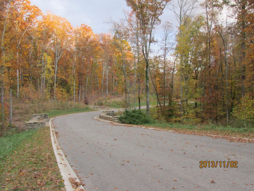 Additional photo for property listing at Lot 5 Eagle Ridge Road Lot 5 Eagle Ridge Road Rockwood, Tennessee 37854 Estados Unidos