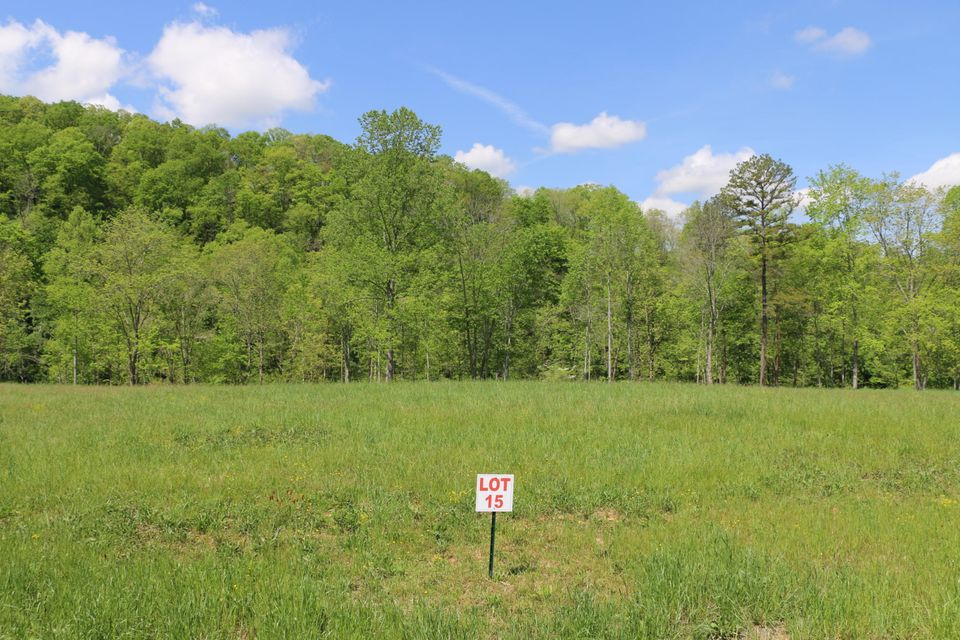 Additional photo for property listing at Wagon Lane Wagon Lane Speedwell, 田纳西州 37870 美国
