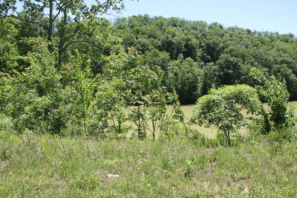 土地 为 销售 在 Lot #15 Stone Bridge Drive Lot #15 Stone Bridge Drive 丹德里奇, 田纳西州 37725 美国