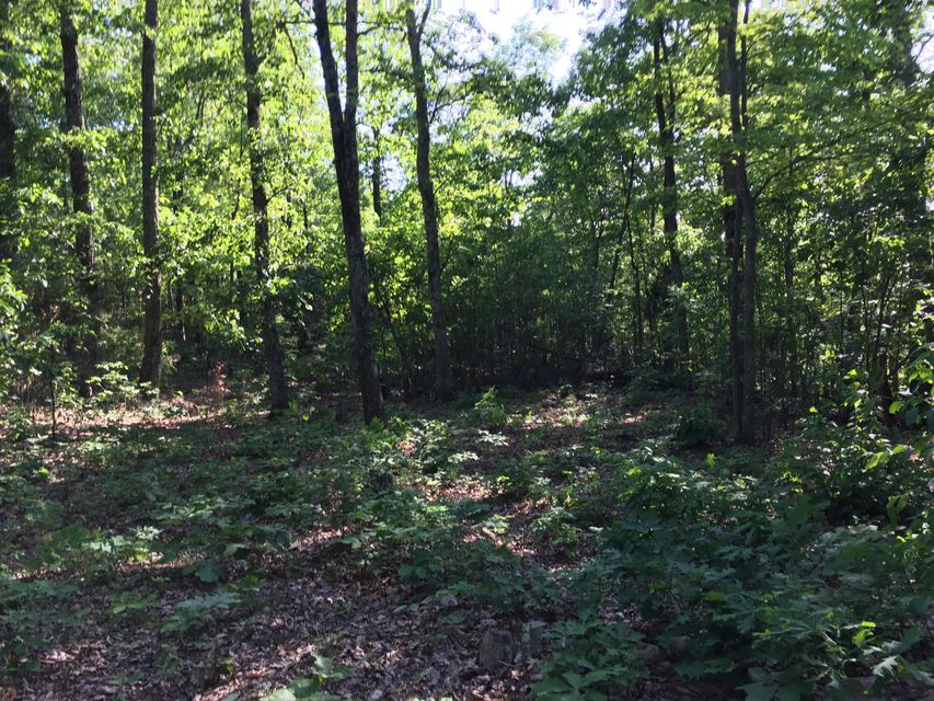 Land for Sale at Stone Mountain Road Bulls Gap, Tennessee 37711 United States
