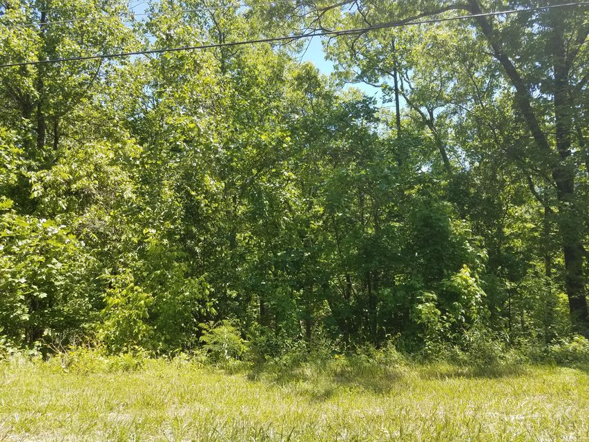 Additional photo for property listing at Laurel Road  Townsend, Tennessee 37882 États-Unis