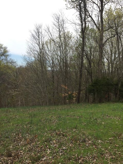 Land for Sale at Lot 20 Lakebend Lane Lot 20 Lakebend Lane Dandridge, Tennessee 37725 United States