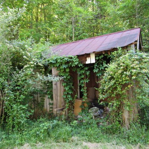Additional photo for property listing at 662 Greasy Hollow Road  Speedwell, Tennessee 37870 États-Unis