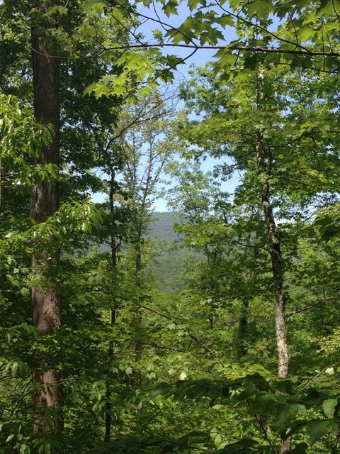 Land for Sale at 330 Ac Spruce Pine Mooresburg, Tennessee 37811 United States