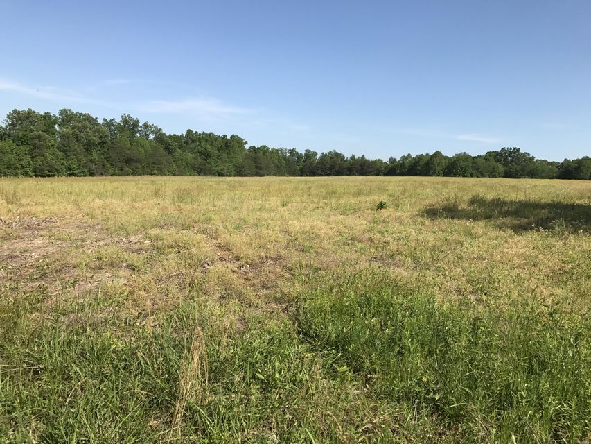 Land for Sale at Rome Road Deer Lodge, Tennessee 37726 United States