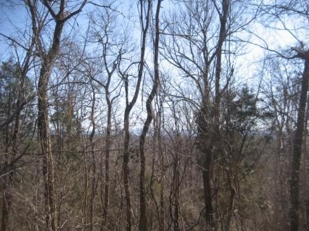 Additional photo for property listing at Scenic River Road Scenic River Road Madisonville, 田纳西州 37354 美国