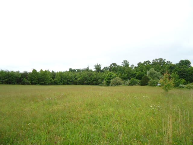 Land for Sale at 5.03 Ac. W. Cole Road Doyle, Tennessee 38559 United States