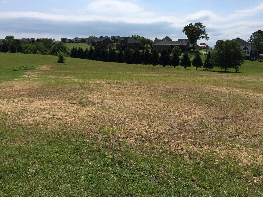 土地 为 销售 在 2029 Smokey Meadows Drive 2029 Smokey Meadows Drive 丹德里奇, 田纳西州 37725 美国