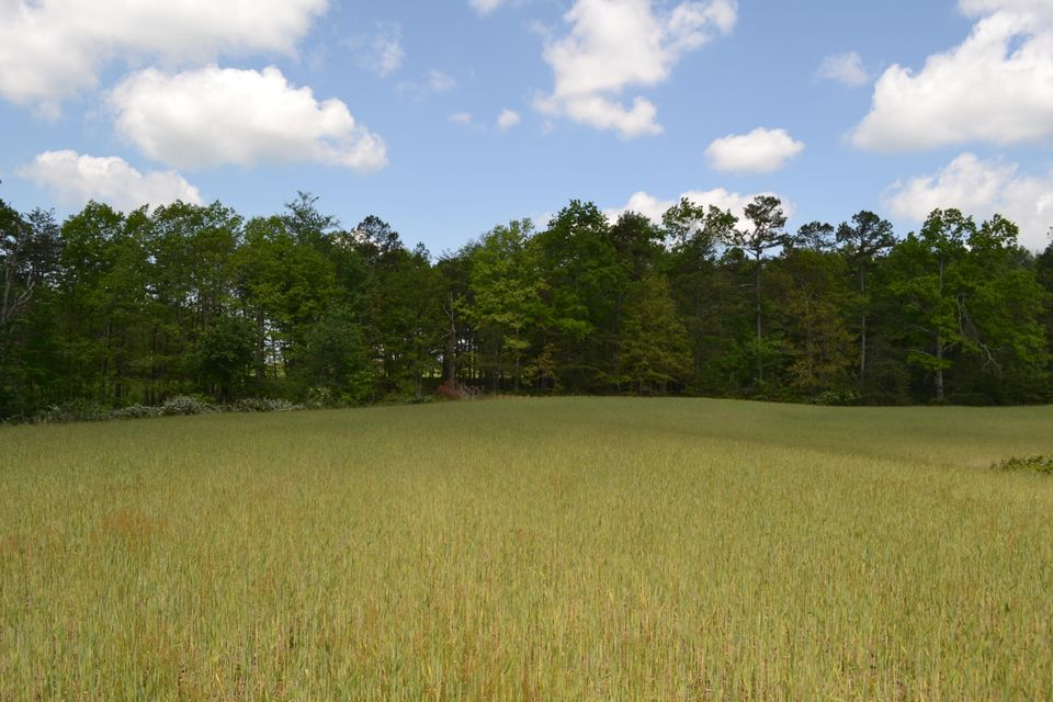 Land for Sale at Rolling Meadows Road Grimsley, Tennessee 38565 United States