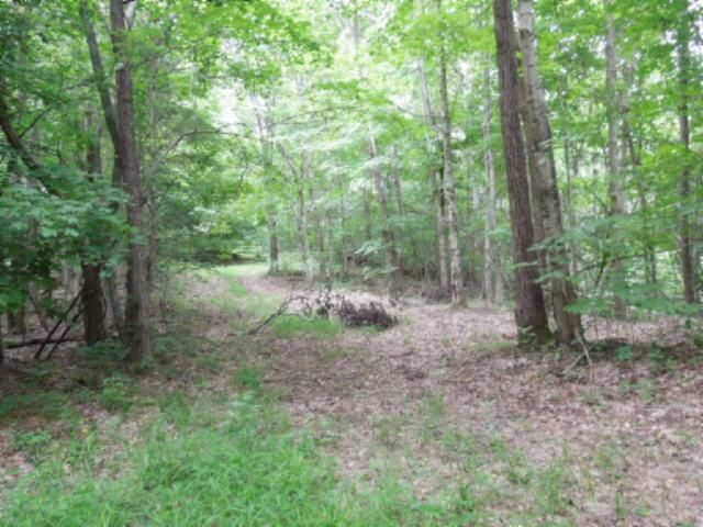 Additional photo for property listing at 5.52 Ac Star Point Road 5.52 Ac Star Point Road Celina, Tennessee 38551 États-Unis