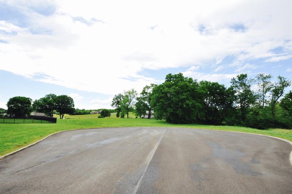 Additional photo for property listing at River Island Blvd  Kodak, Tennessee 37764 Estados Unidos