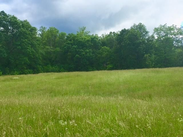 Additional photo for property listing at Jurgens Road Jurgens Road Robbins, Tennessee 37852 United States