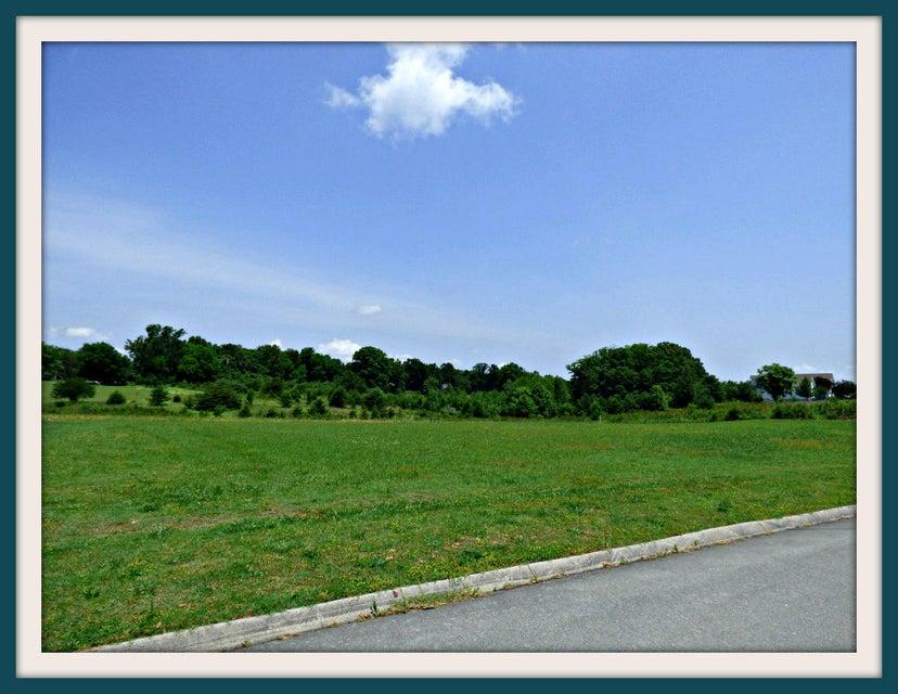 Земля для того Продажа на Lot 16 Horizon Drive Lot 16 Horizon Drive Baneberry, Теннесси 37890 Соединенные Штаты
