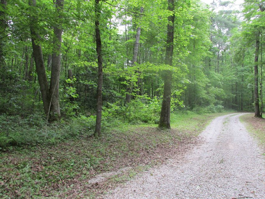 Land for Sale at Glen Avenue Rugby, Tennessee 37733 United States
