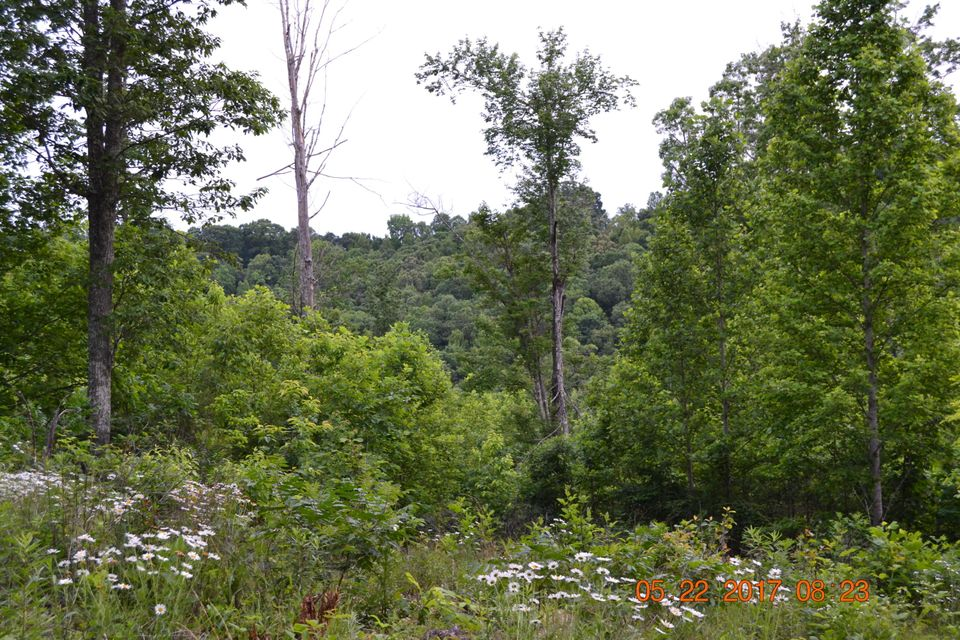 Additional photo for property listing at Off Walker Road Off Walker Road Sharps Chapel, Tennessee 37866 United States