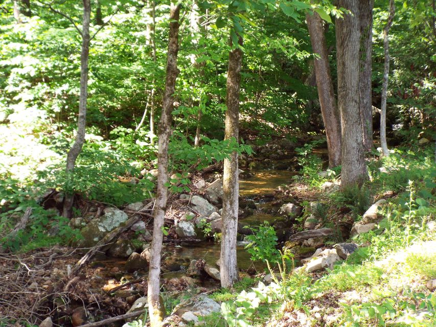 Additional photo for property listing at Lot 5 Tomahawk Drive Lot 5 Tomahawk Drive Cosby, Tennessee 37722 États-Unis
