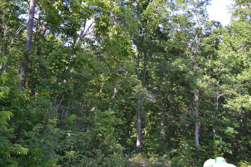 Additional photo for property listing at 823 Clear Creek Pkwy 823 Clear Creek Pkwy Clarkrange, Tennessee 38553 États-Unis