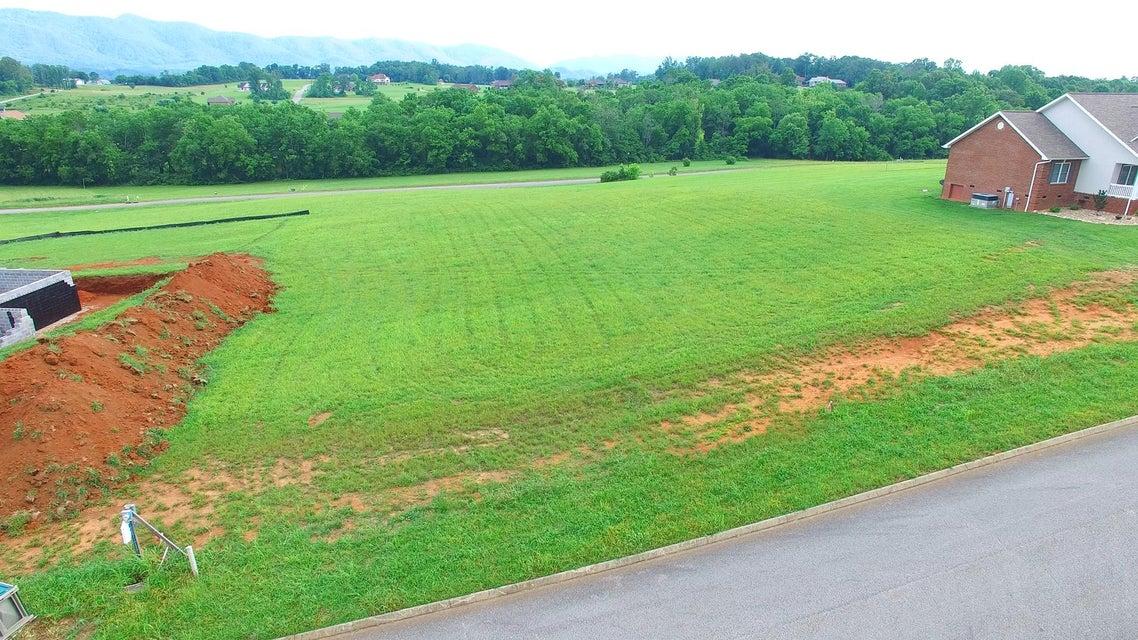 土地,用地 为 销售 在 673 Winding Creek Way 673 Winding Creek Way Walland, 田纳西州 37886 美国