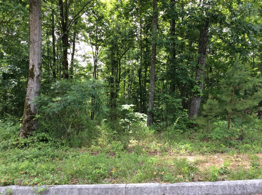 Additional photo for property listing at Deer Ridge Rd, Lot 11 Deer Ridge Rd, Lot 11 Kingston, Tennessee 37763 États-Unis
