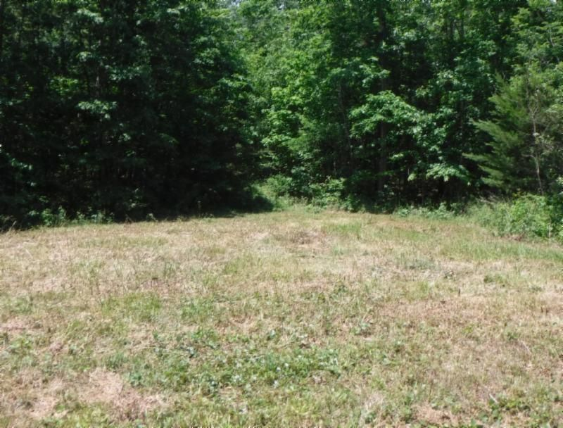 Land for Sale at 7.53 Ac. Big Piney Loop Wilder, Tennessee 38589 United States