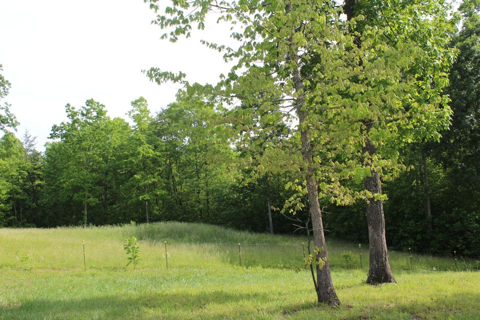 Additional photo for property listing at 594 Crestwood Drive 594 Crestwood Drive Jamestown, Tennessee 38556 États-Unis