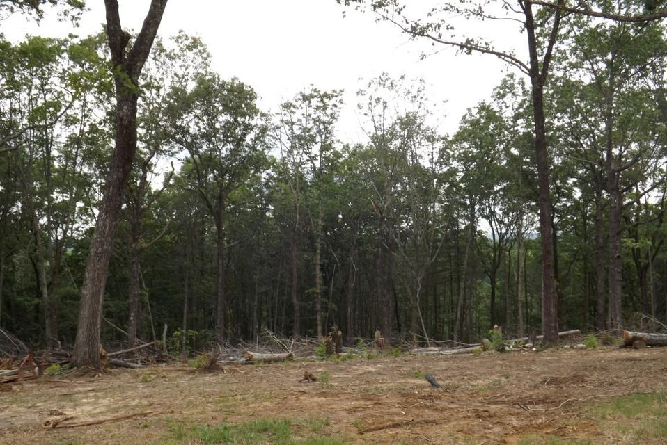 Land for Sale at 38 Elk Drive Grandview, Tennessee 37337 United States