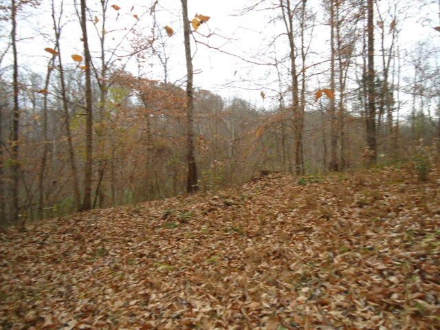 Land for Sale at 273 Kenway Street 273 Kenway Street Cookeville, Tennessee 38501 United States