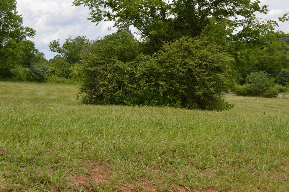 Additional photo for property listing at Lot 88 Mississippi Avenue Lot 88 Mississippi Avenue Seymour, Tennessee 37865 United States