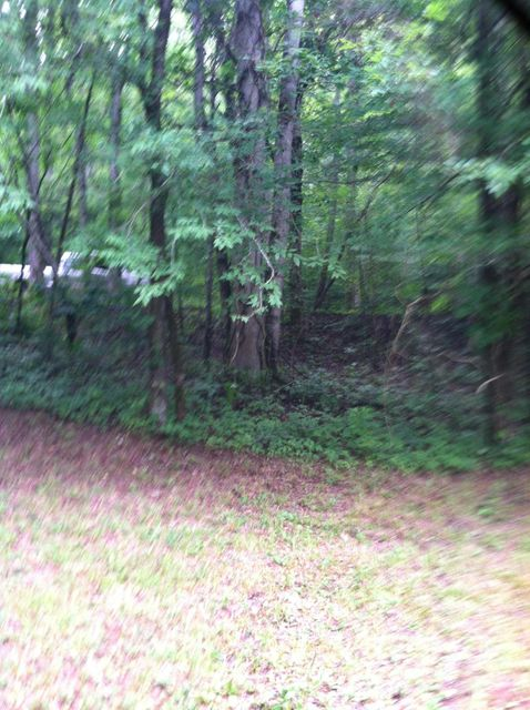 Additional photo for property listing at 206 Old Citico Rd Lot 30 206 Old Citico Rd Lot 30 Vonore, Теннесси 37885 Соединенные Штаты