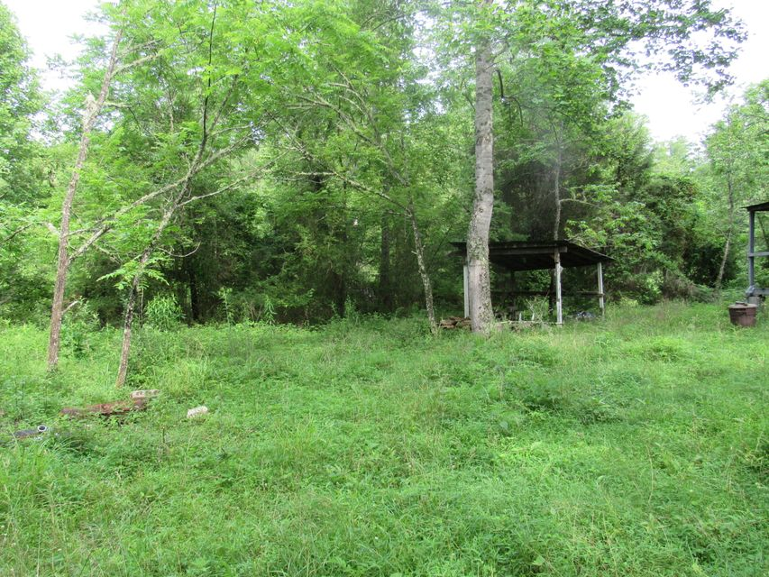 Additional photo for property listing at Russell Hollow Road Russell Hollow Road Harriman, Tennessee 37748 États-Unis