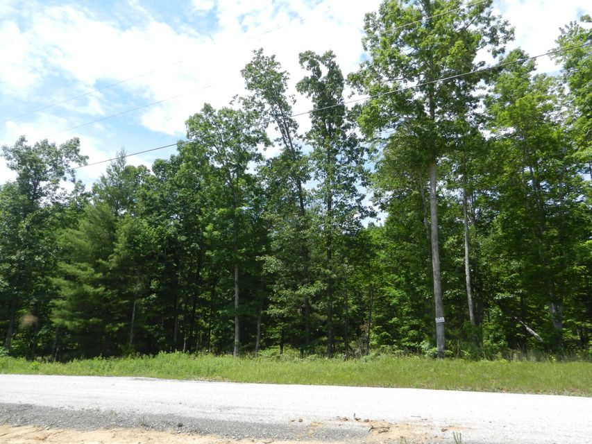 Additional photo for property listing at Lot 9 Toomey Falls Road Lot 9 Toomey Falls Road Oneida, Теннесси 37841 Соединенные Штаты