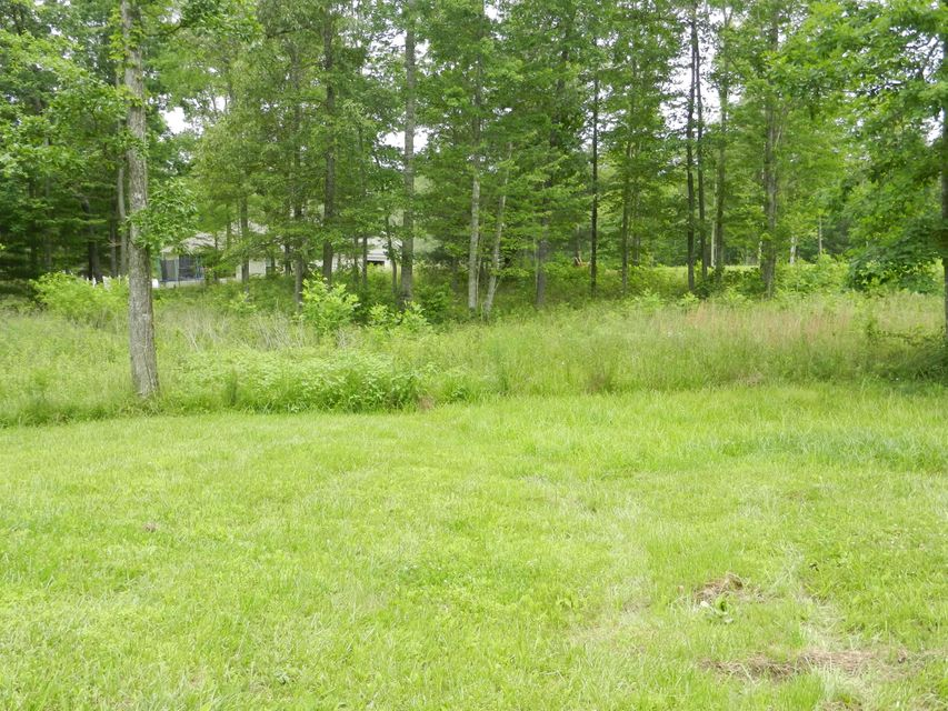 Additional photo for property listing at Lot 21 Toomey Road Lot 21 Toomey Road Oneida, Tennessee 37841 Estados Unidos