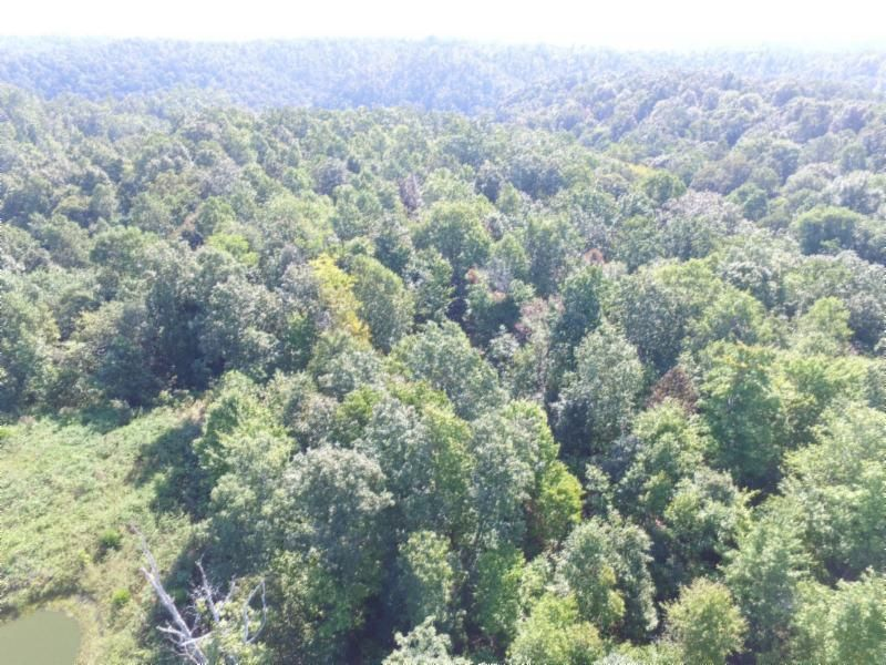 Land for Sale at 22.73 Ac. South Fork Road Whitleyville, Tennessee 38588 United States
