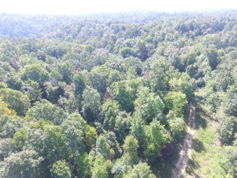 Land for Sale at 22.72 Ac. South Fork Road Whitleyville, Tennessee 38588 United States