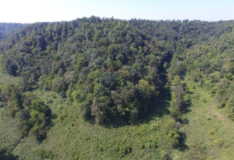 Land for Sale at 15.77 Ac. South Fork Road Whitleyville, Tennessee 38588 United States