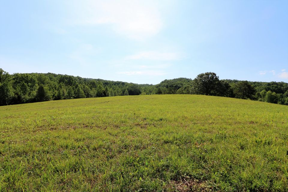 Land for Sale at County Road 230 County Road 230 Niota, Tennessee 37826 United States