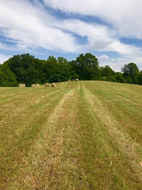 Additional photo for property listing at Fort Sumter Road Fort Sumter Road Knoxville, Tennessee 37938 Estados Unidos