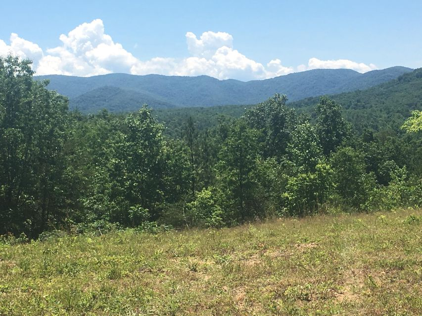 Land for Sale at Campground Road Campground Road Sunbright, Tennessee 37872 United States