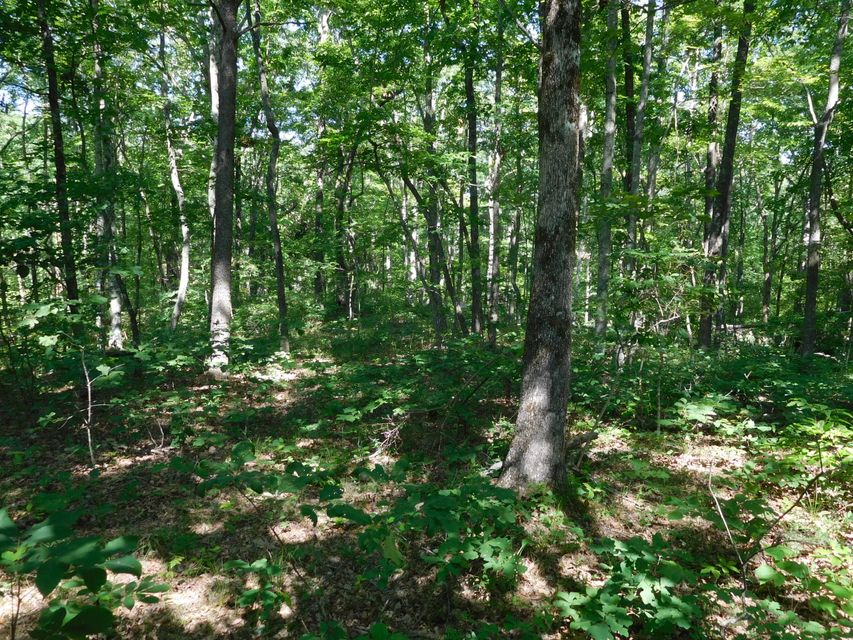 Additional photo for property listing at Cumberland Cove Road. Road Cumberland Cove Road. Road Monterey, Теннесси 38574 Соединенные Штаты