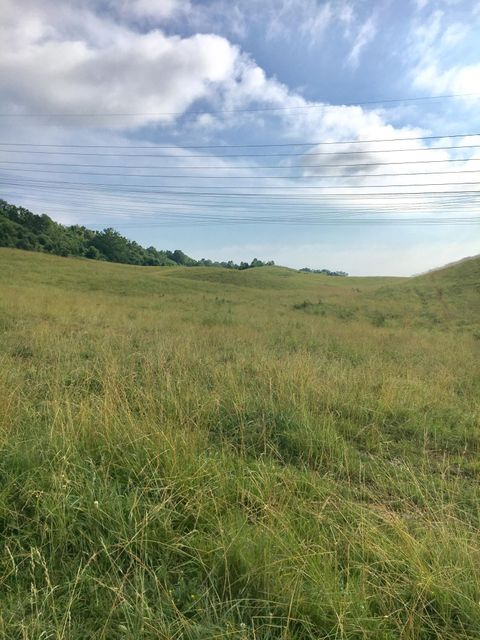 Land for Sale at Webster Valley Road Road Webster Valley Road Road Rogersville, Tennessee 37857 United States