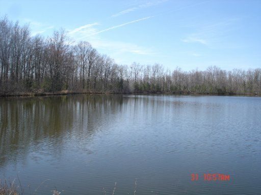 Land for Sale at Meister Hills Road Deer Lodge, Tennessee 37726 United States