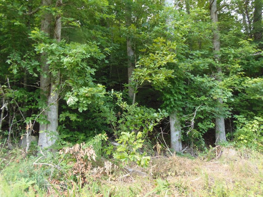 Land for Sale at Scenic River Road Scenic River Road Madisonville, Tennessee 37354 United States