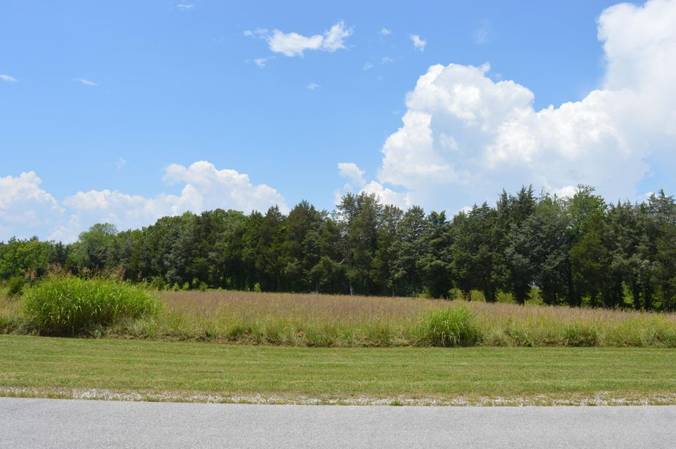 Land for Sale at 250 W Shore Drive 250 W Shore Drive Rockwood, Tennessee 37854 United States