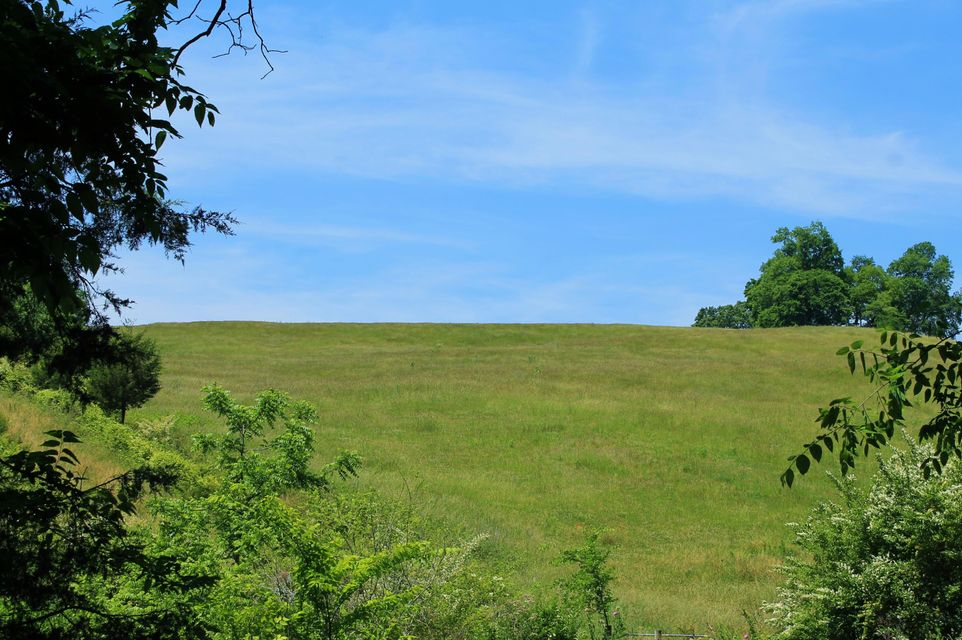 Land for Sale at Clark Road Rutledge, Tennessee 37861 United States
