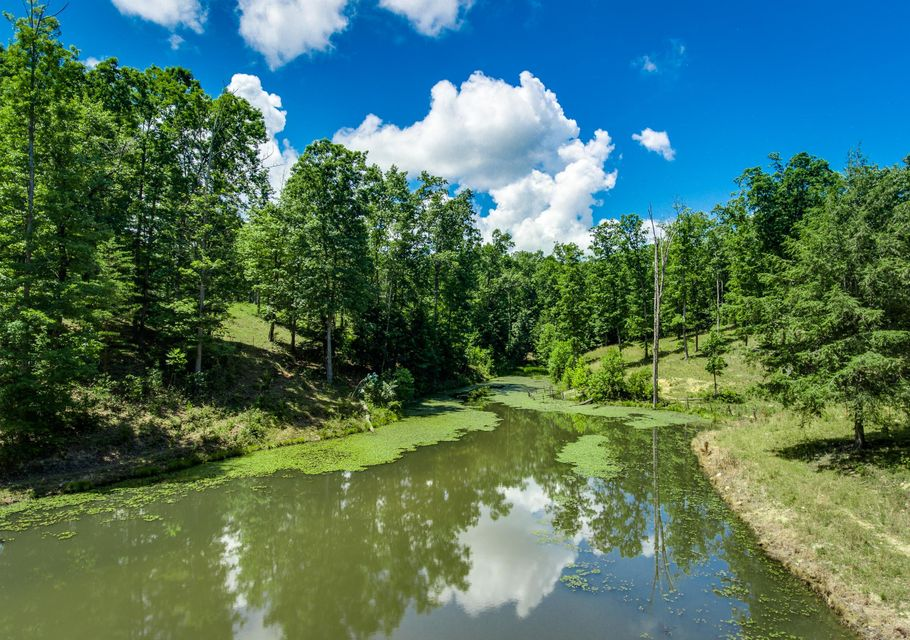 Land for Sale at Leatherwood Ford Road Jamestown, Tennessee 38556 United States