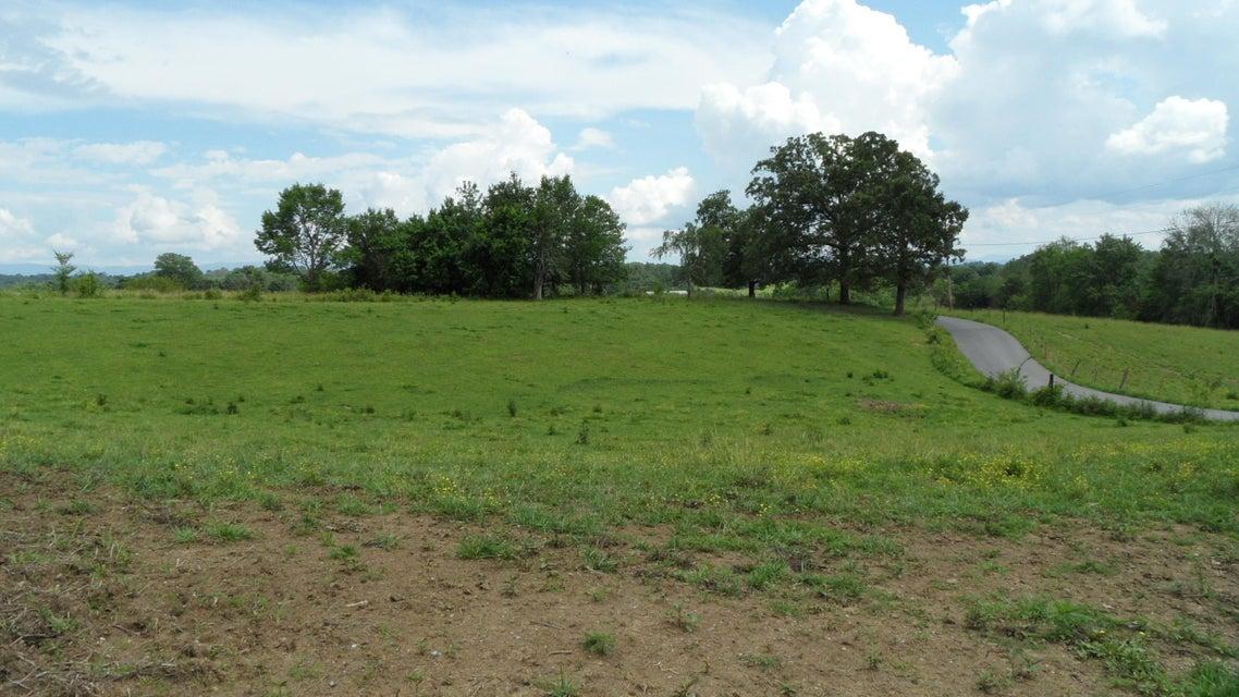 Terrain pour l Vente à Tunnell Road Greeneville, Tennessee 37743 États-Unis