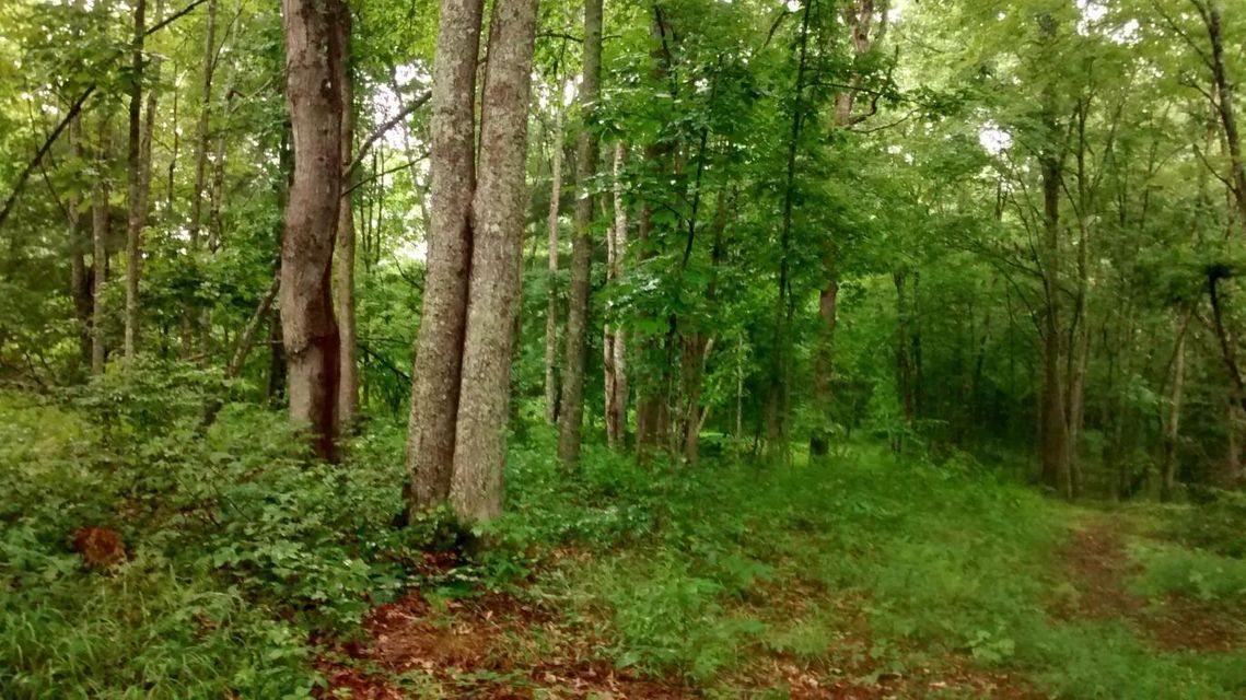 Land for Sale at Burnt Mill Road Robbins, Tennessee 37852 United States