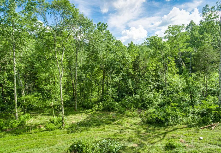 Land for Sale at 3785 Victory View Cookeville, Tennessee 38506 United States