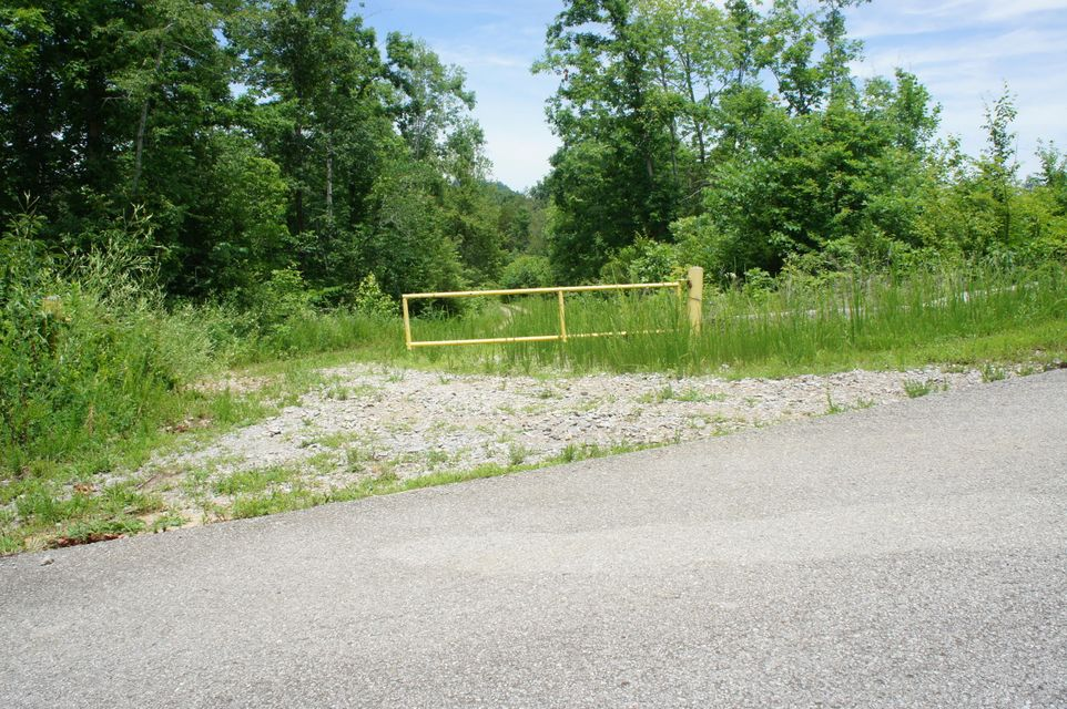 Land for Sale at Shadden Road Shadden Road Tellico Plains, Tennessee 37385 United States